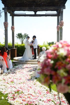Wedding Report【Celestina Agostino】